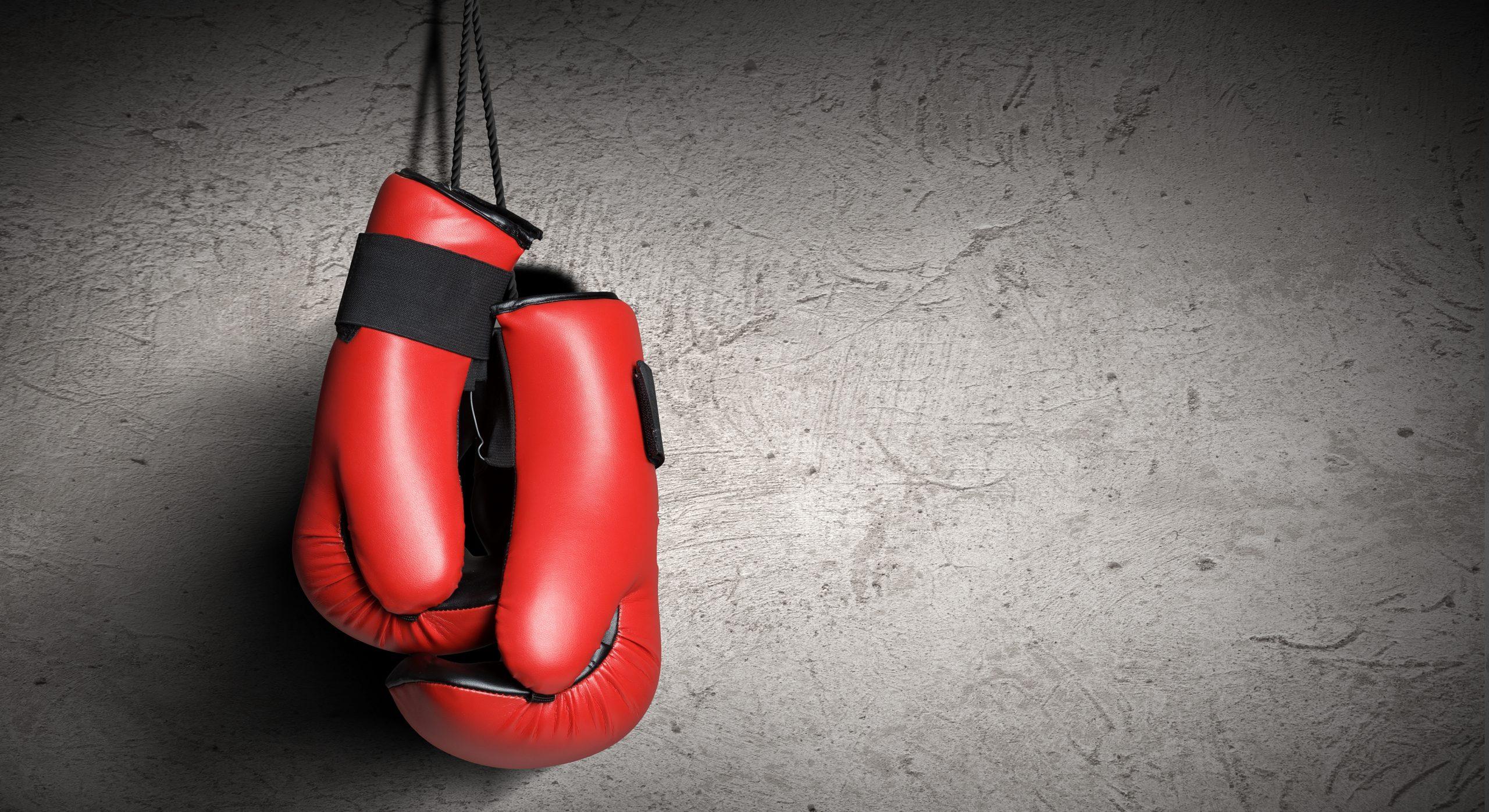 Bokshandschoenen: Wat zijn de beste bokshandschoenen van 2020?
