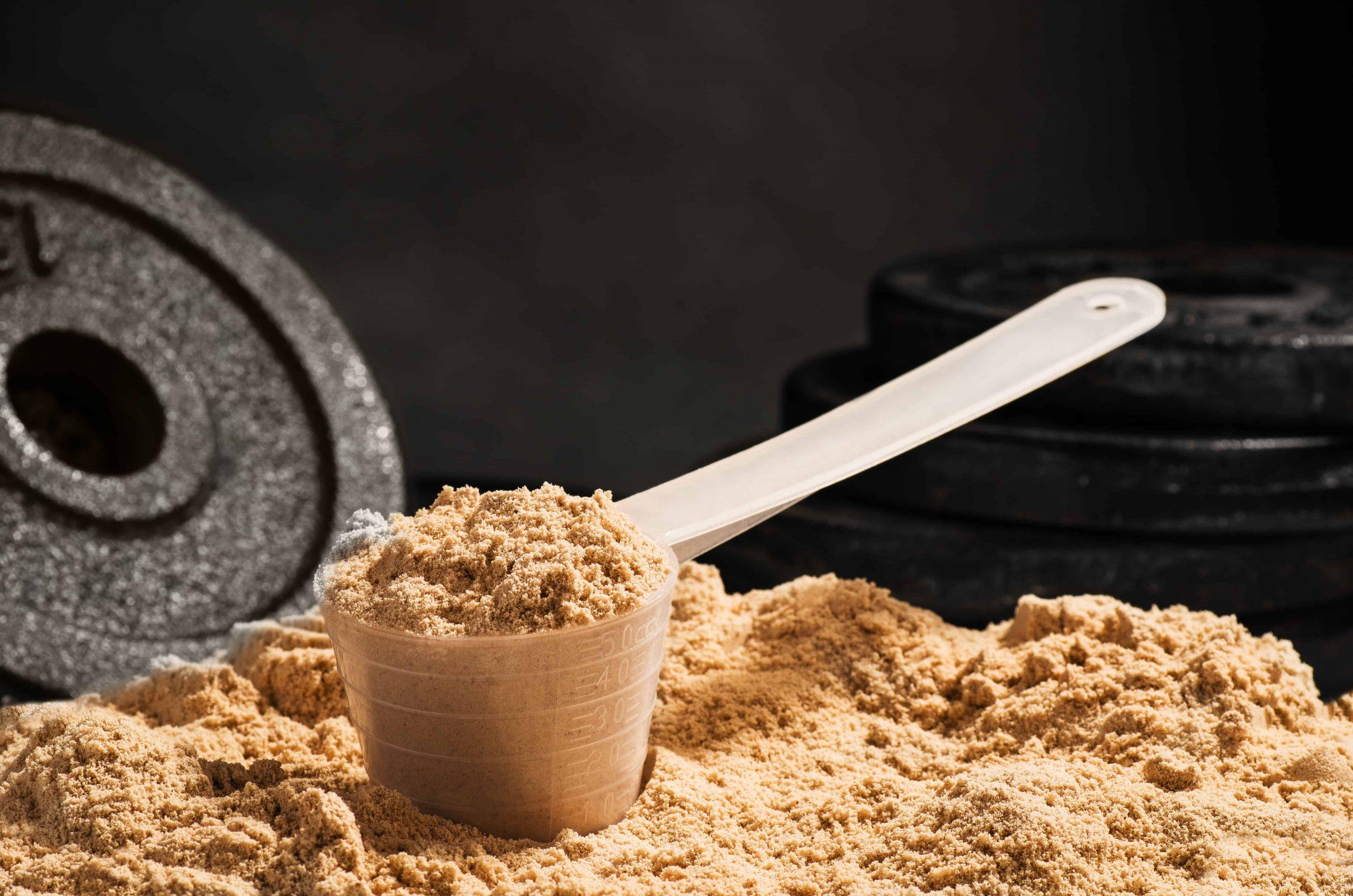 Whey proteïne: Wat zijn de beste supplementen van 2020?