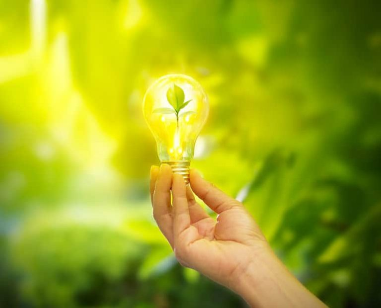 Muchas bombillas LED tienen opciones para adaptar reguladores de luz