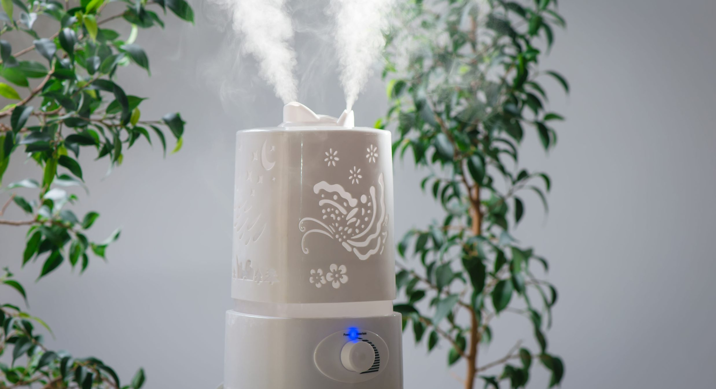 ultrasonic humidifier in the house