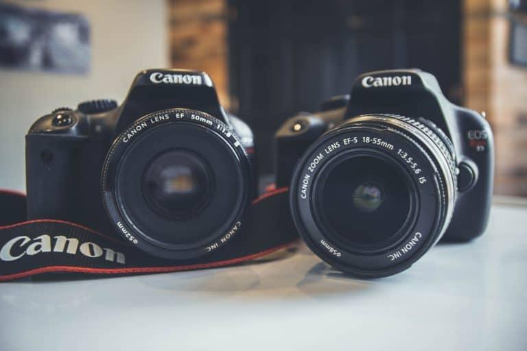 two canon cameras