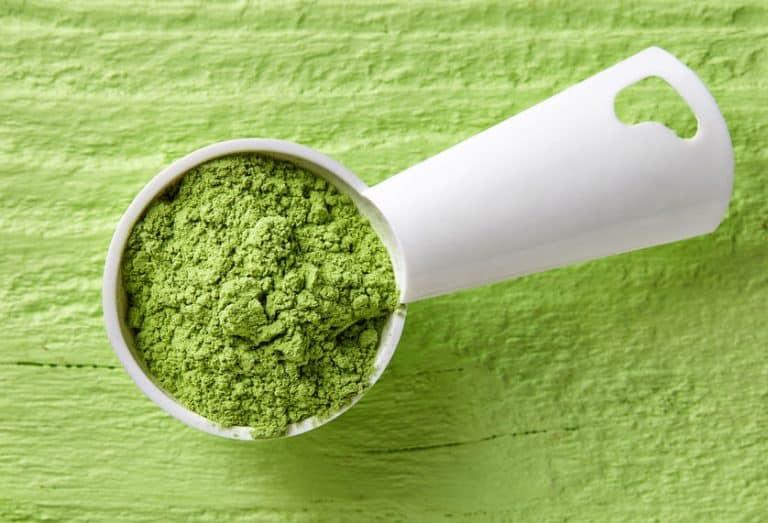 green wheatgrass powder