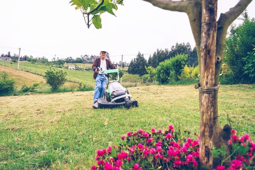 Senior man het gras maaien met grasmaaier