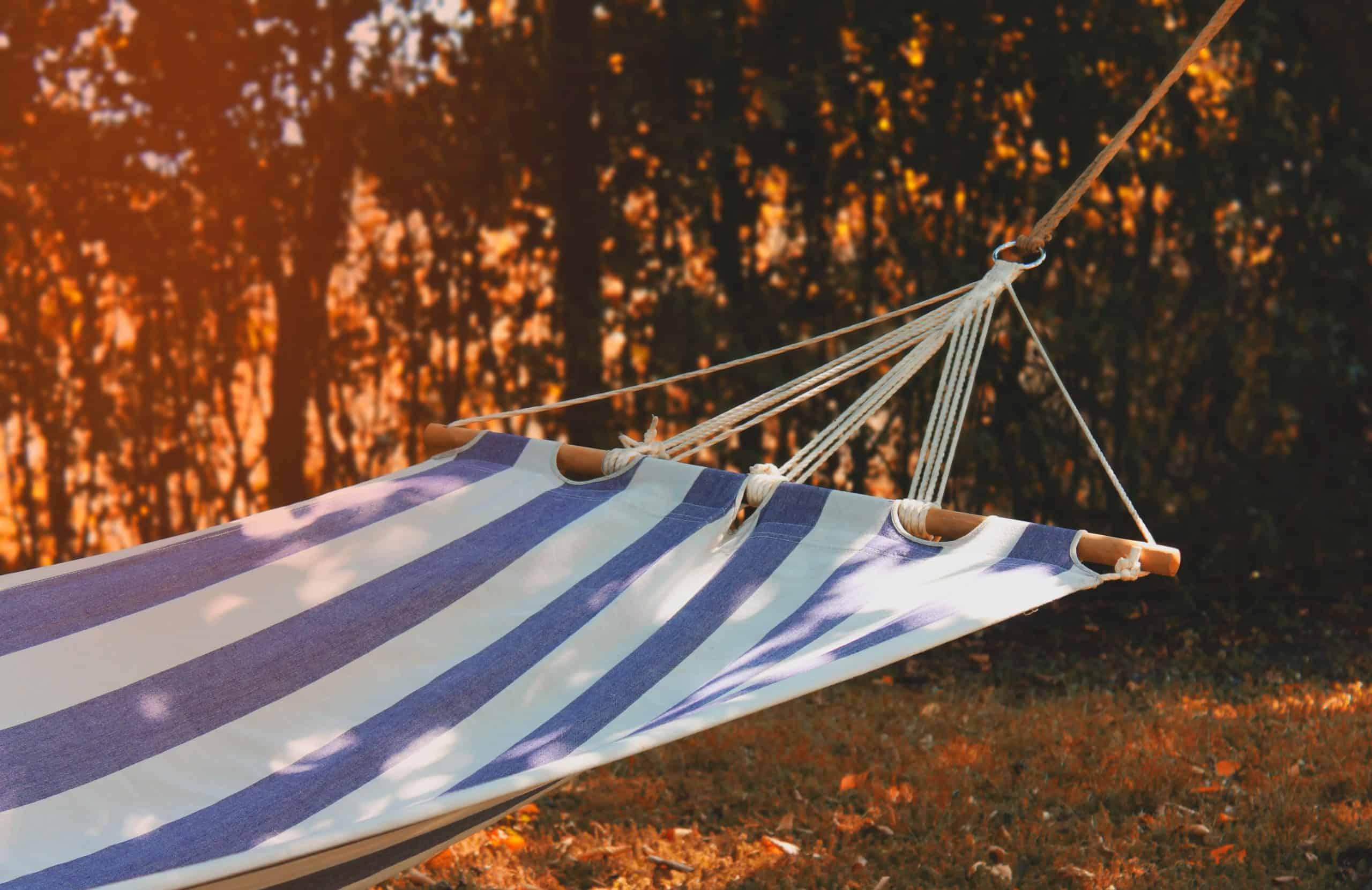hangmat voor picknick in het bos