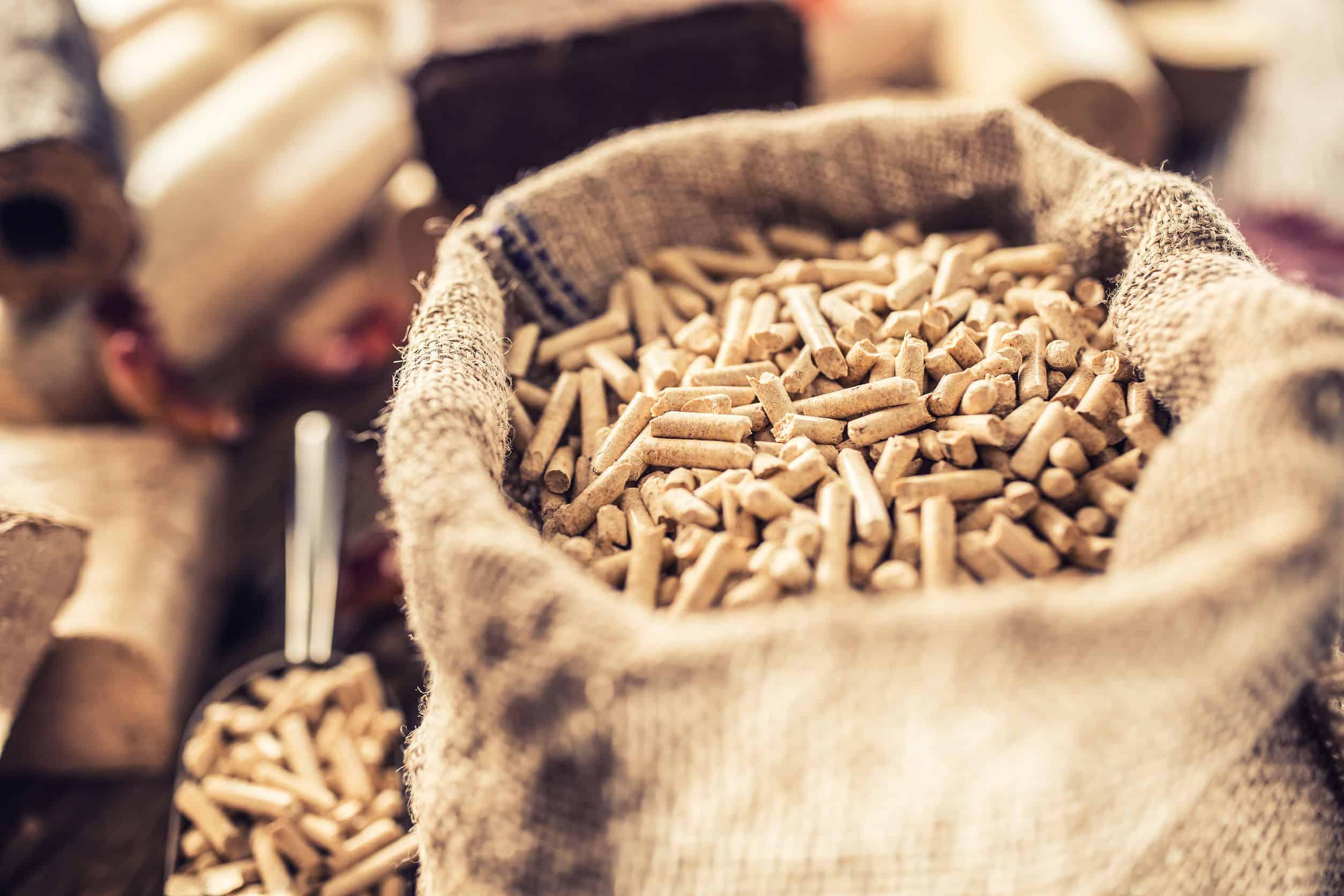 Houten geperste pellets en briketten uit biomassa met herfstbladeren.