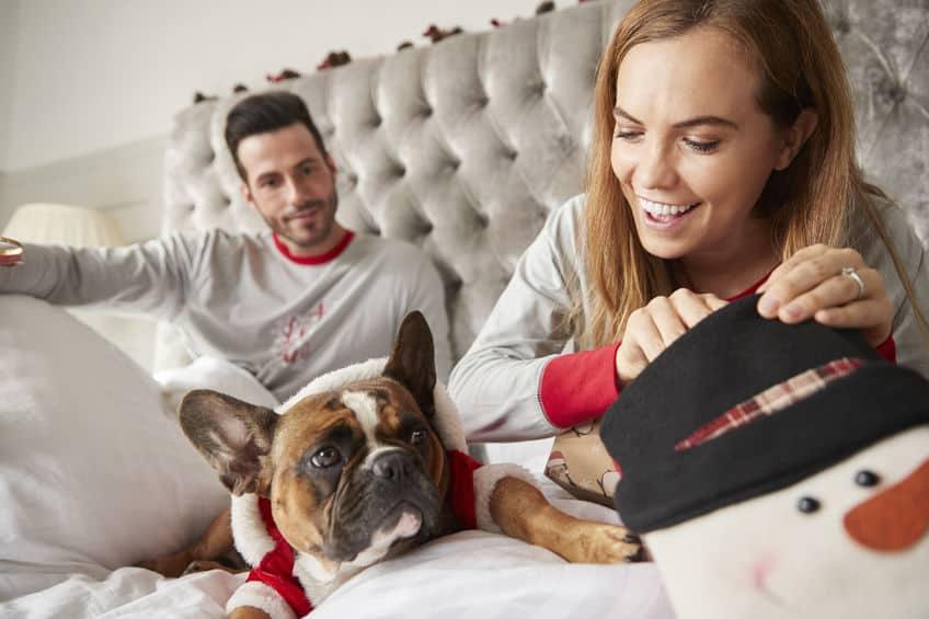 Paar In Bed Thuis Met Hond Gekleed In Santa Kostuum Opening Geschenken Op Eerste Kerstdag