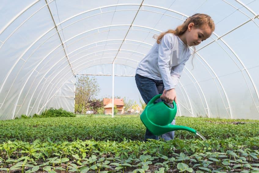 meisje planten in kas water geven