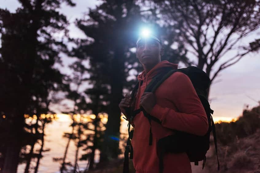 wandelen in het bos 's nachts