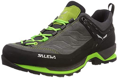 Salewa Ms Mountain Trainer Gore-tex Trekking- en wandellaarzen voor heren, Ombre Blue Tender Shot, 43 EU