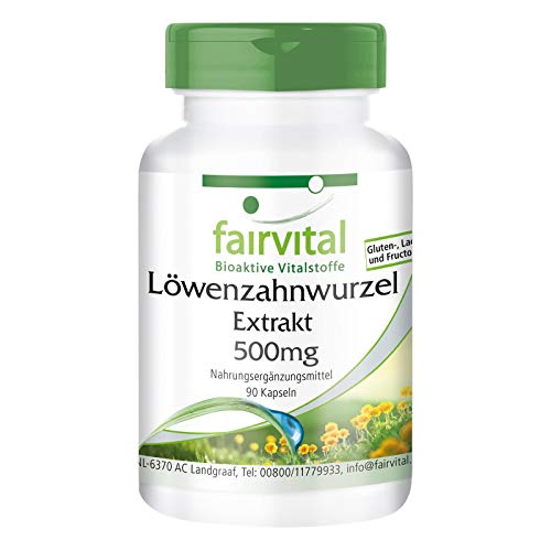 Paardenbloem capsules - 500mg paardenbloemwortel extract per capsule - HOOG GEDOSEERD - 10-voudig geconcentreerd - VEGAN - 120 capsules