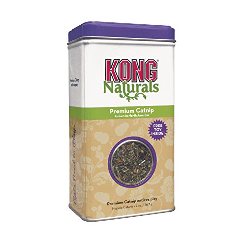 KONG - Naturals Premium Catnip - Premium North American Grown - 2 oz