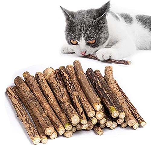 30 stks/set Cat Catnip Sticks, Cat Chew Sticks, Cat Catnip Toys, Natural Matatabi Silvervine Chew Sticks, Tandenknarsen Kauwspeeltjes voor Kat, Dental Treats Catnip Toys for Cat Kitten