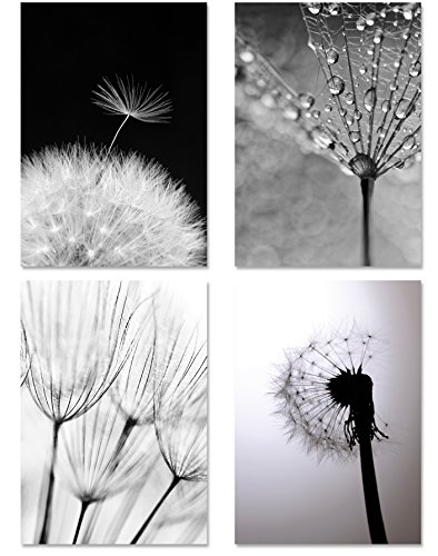 PICSonPAPER Posters set van 4 Pustbloemen MONOCHROM, niet ingelijst DIN A4, kunstdruk, posters, decoratie, muurschildering, zwart-wit, macro-foto's